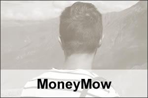 MoneyMow Article exp