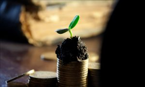 European-Dividend-Growth-Investing-Blogs-exp